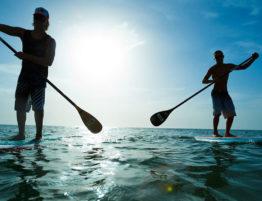 kardio trening, ljeto, more, Stand up paddle boarding, SUP, tjelovježba, vesljanje, vježbanje, zdravlje